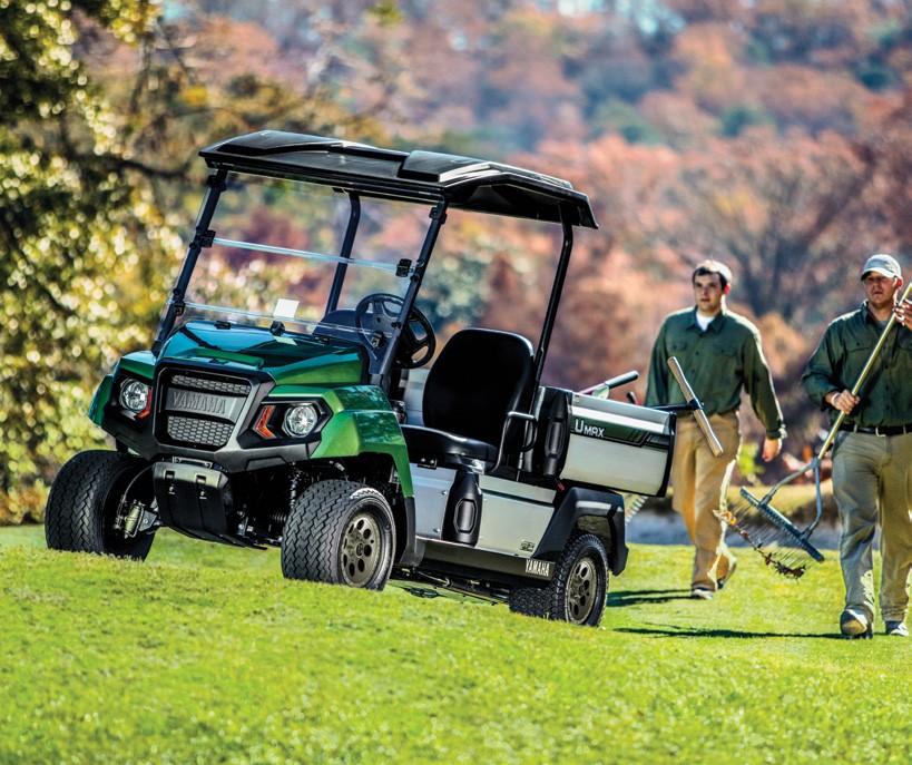 Yamaha Umax 2 Efi Petrol Utility Vehicle